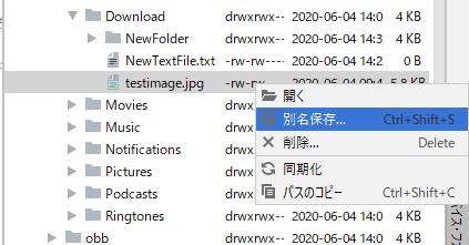 Device File Explorer右クリックメニュー[別名保存]